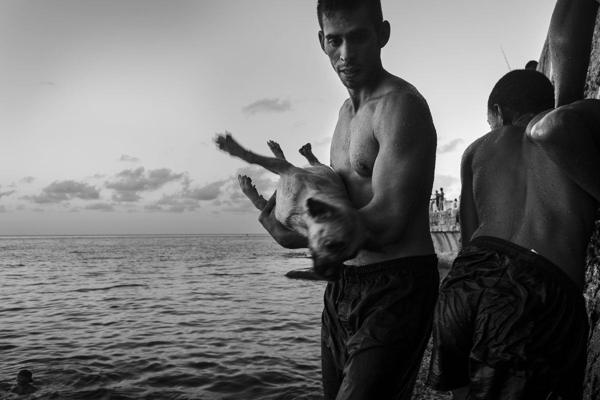 cuban boy with his dog. cuban picture - Jumpers - Last jump in Havana - Cuban Photography essay about the last jumpers in Malecon.
