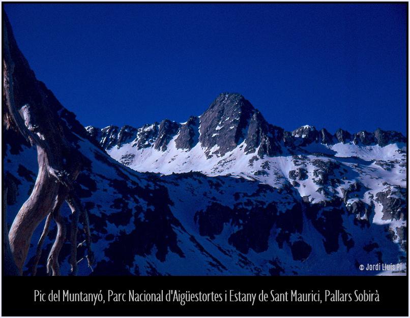 Fotografia del 1972, escanejada de diapositiva,  - Pirineus  - Jordi Lluís Pi, Una mirada fotogràfica