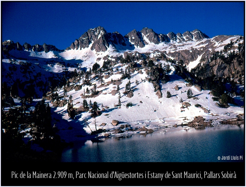 Fotografia del 1972, escanejada de diapositiva,  - Pirineus  - Pirineus
