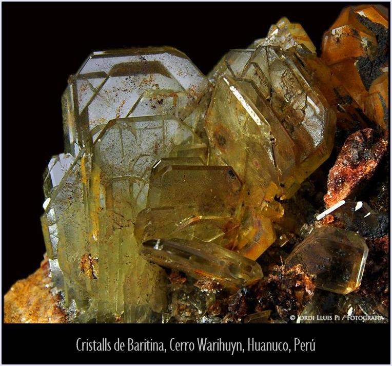 Minerals - Minerals