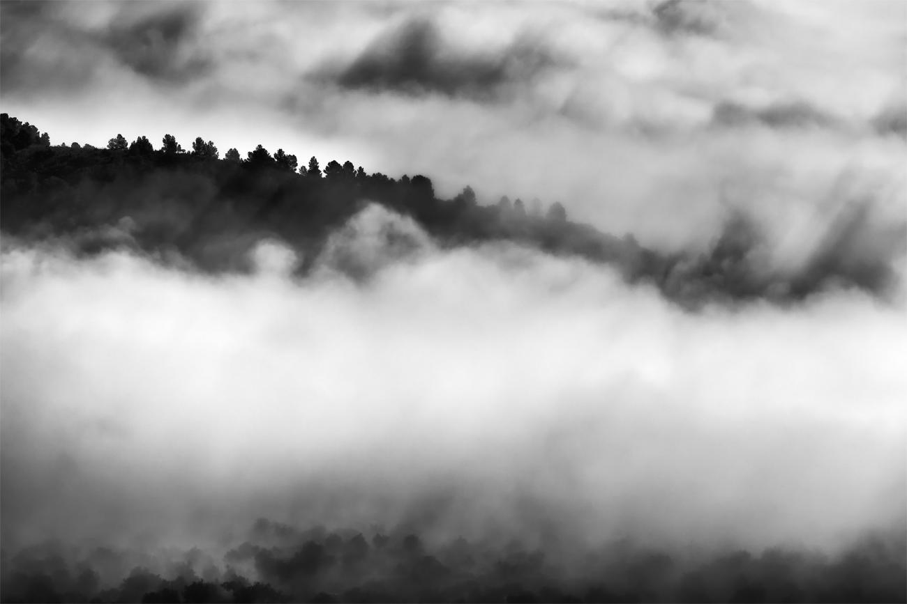 Fog in the Valley - David Frutos Egea - David Frutos Egea - Portfolio Natural