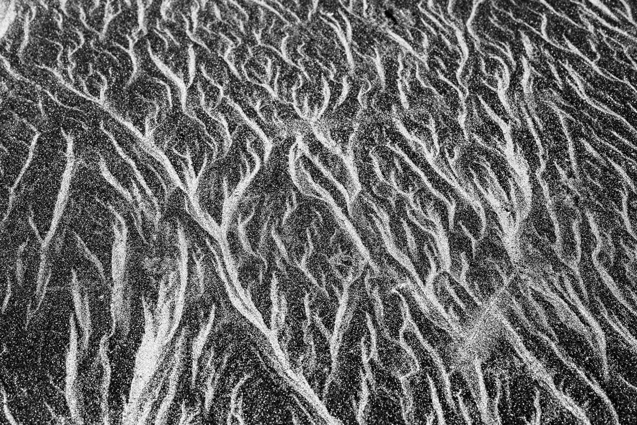 Arenaices - José A. Porras - Portfolio Natural, Fotografía de Naturaleza de Autor