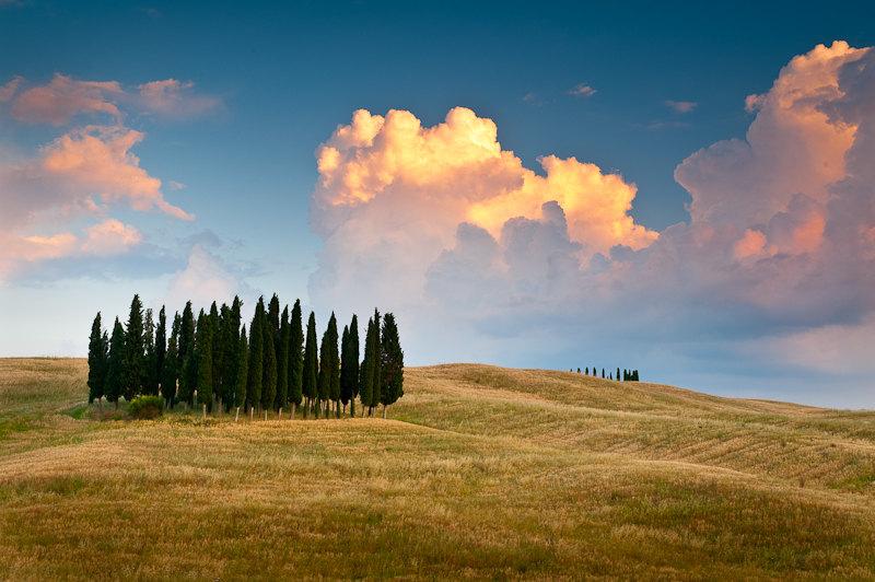 El rebaño. Paisaje de la Toscana (Italia) - Koldo Badillo - Fotografías de naturaleza de Koldo Badillo en Portafolio Natural