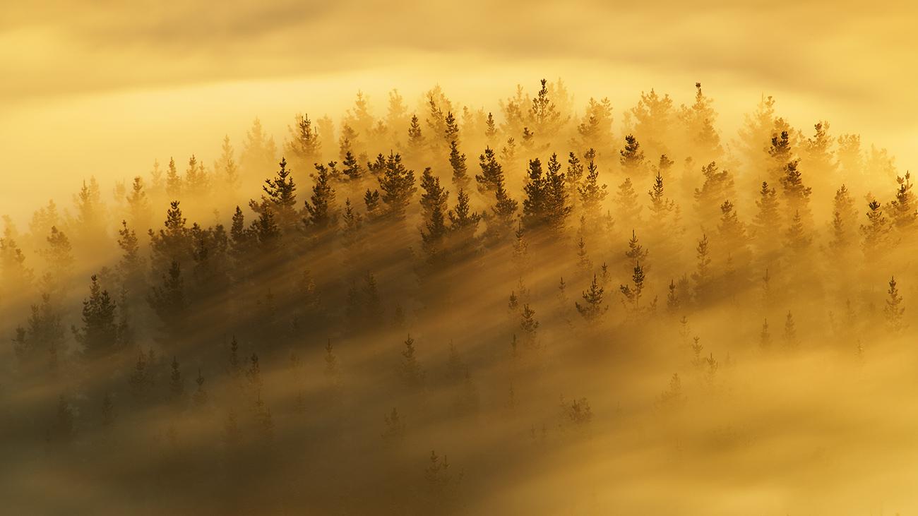 Momentos de luz - Iñaki Bolumburu - Iñaki Bolumburu