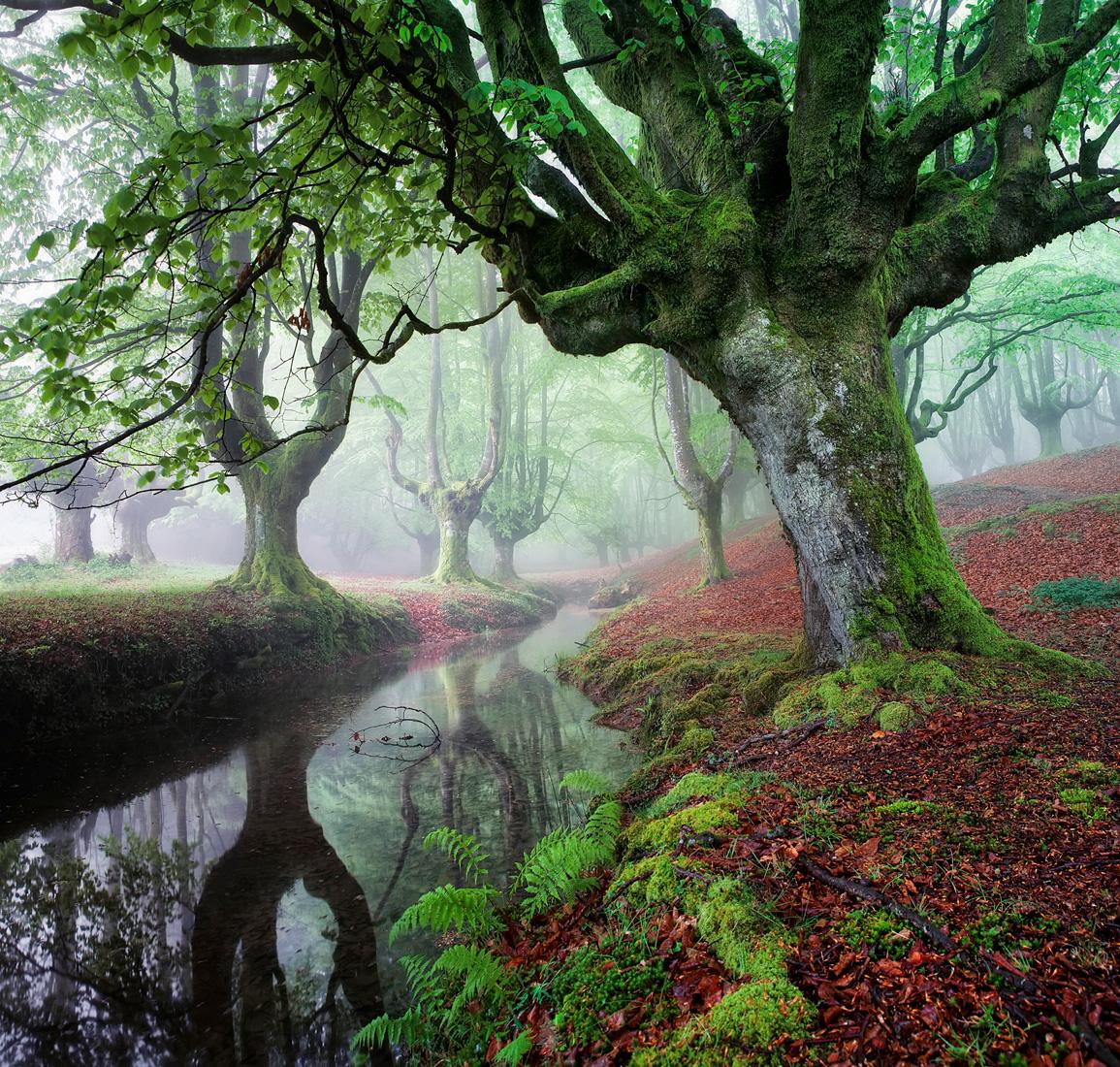 UN LUGAR TAN BELLO QUE DUELE - Juan Pixelecta - Portfolio Natural, Fotografía de Naturaleza de Autor