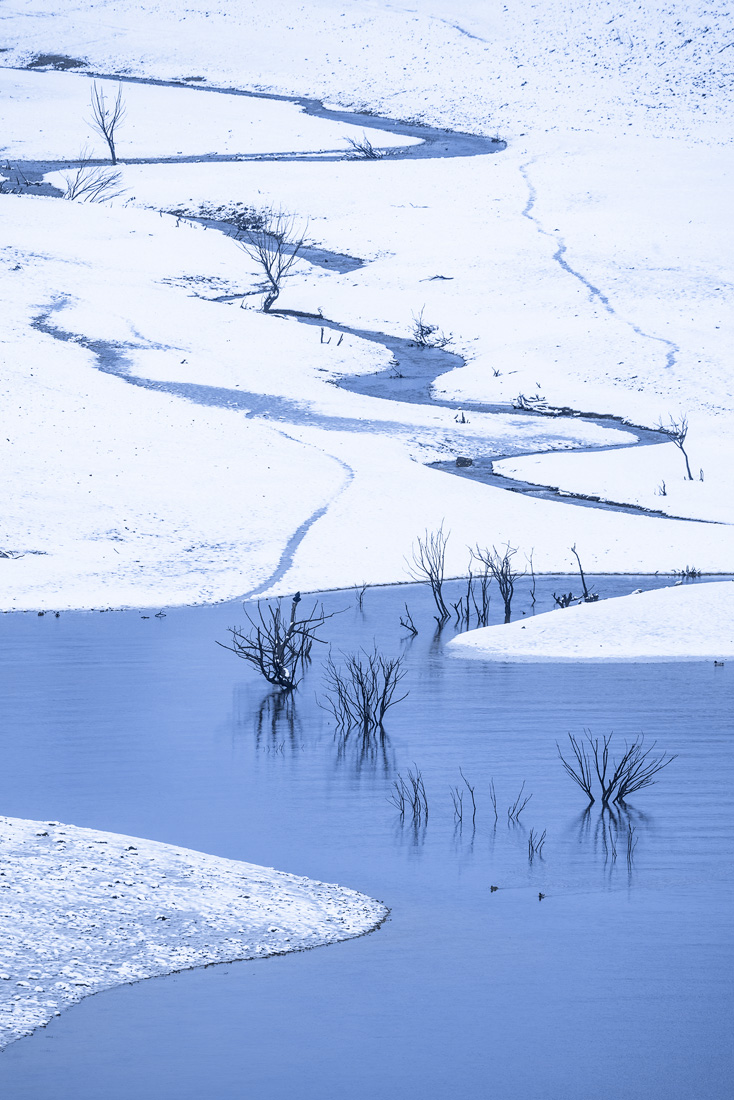 Juan Pixelecta - Portfolio Natural, Fotografía de Naturaleza de Autor