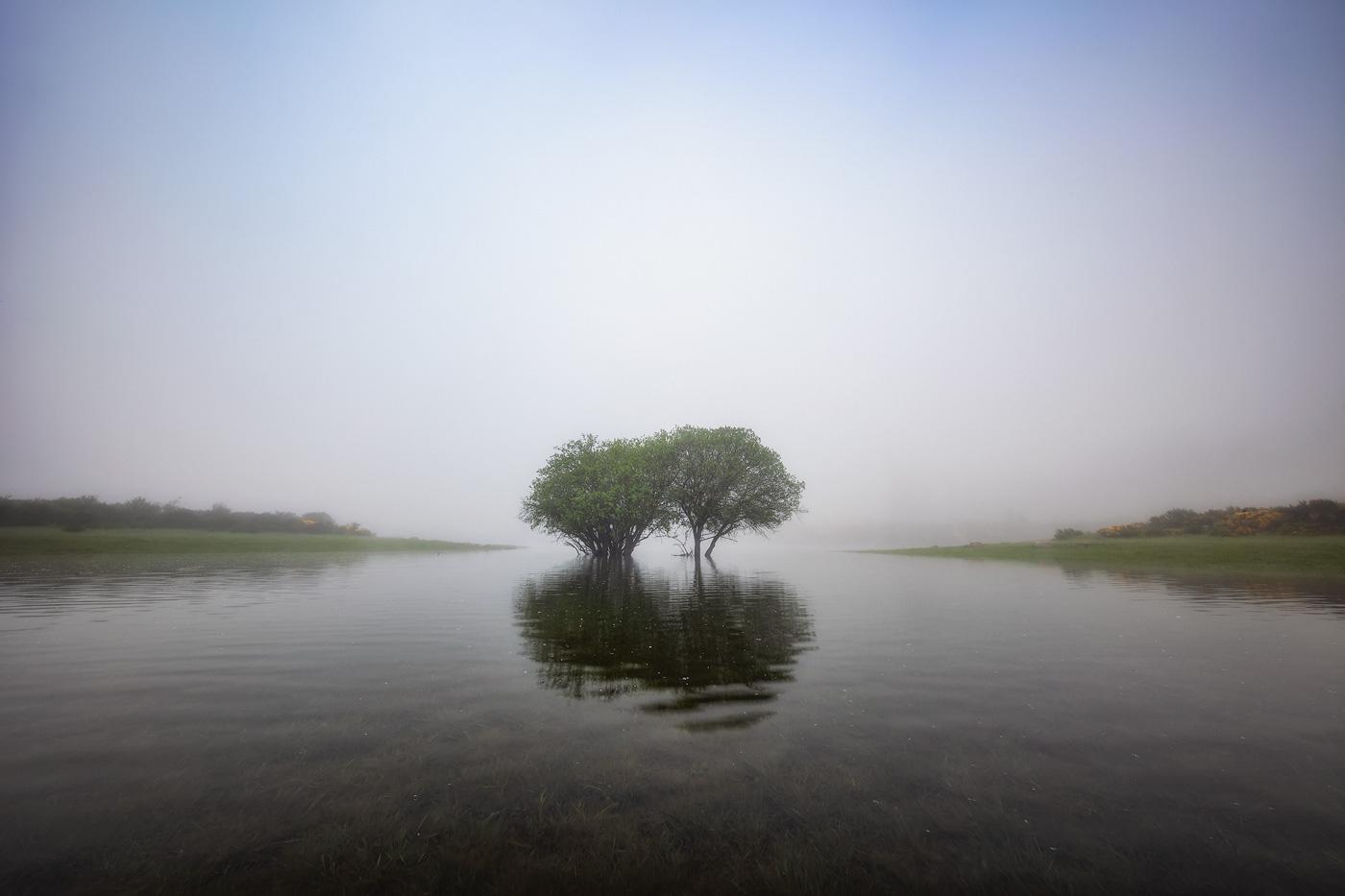 SILENCIO, SE MIRA. - Juan Pixelecta - Portfolio Natural, Fotografía de Naturaleza de Autor