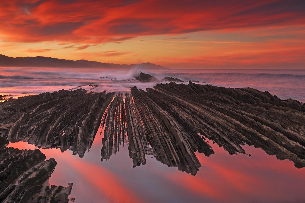 hogeitabederatzi - Luis Llavori - Portfolio Natural, Fotografía de Naturaleza de Autor