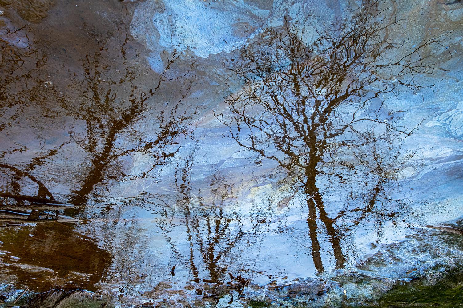 Impressionist Oil Painting - Ignacio Medem - Portfolio Natural, Fotografía de Naturaleza de Autor