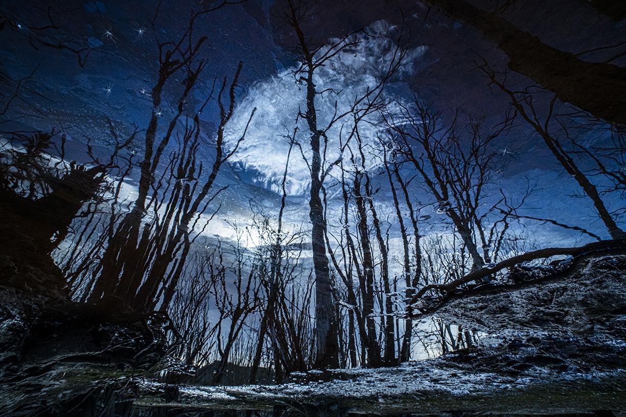 Night Reflections - Ignacio Medem - Portfolio Natural, Fotografía de Naturaleza de Autor