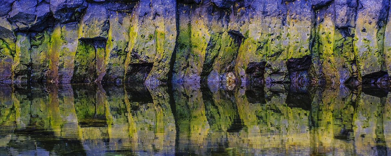 Juanjo Sierra - Portfolio Natural, Fotografía de Naturaleza de Autor