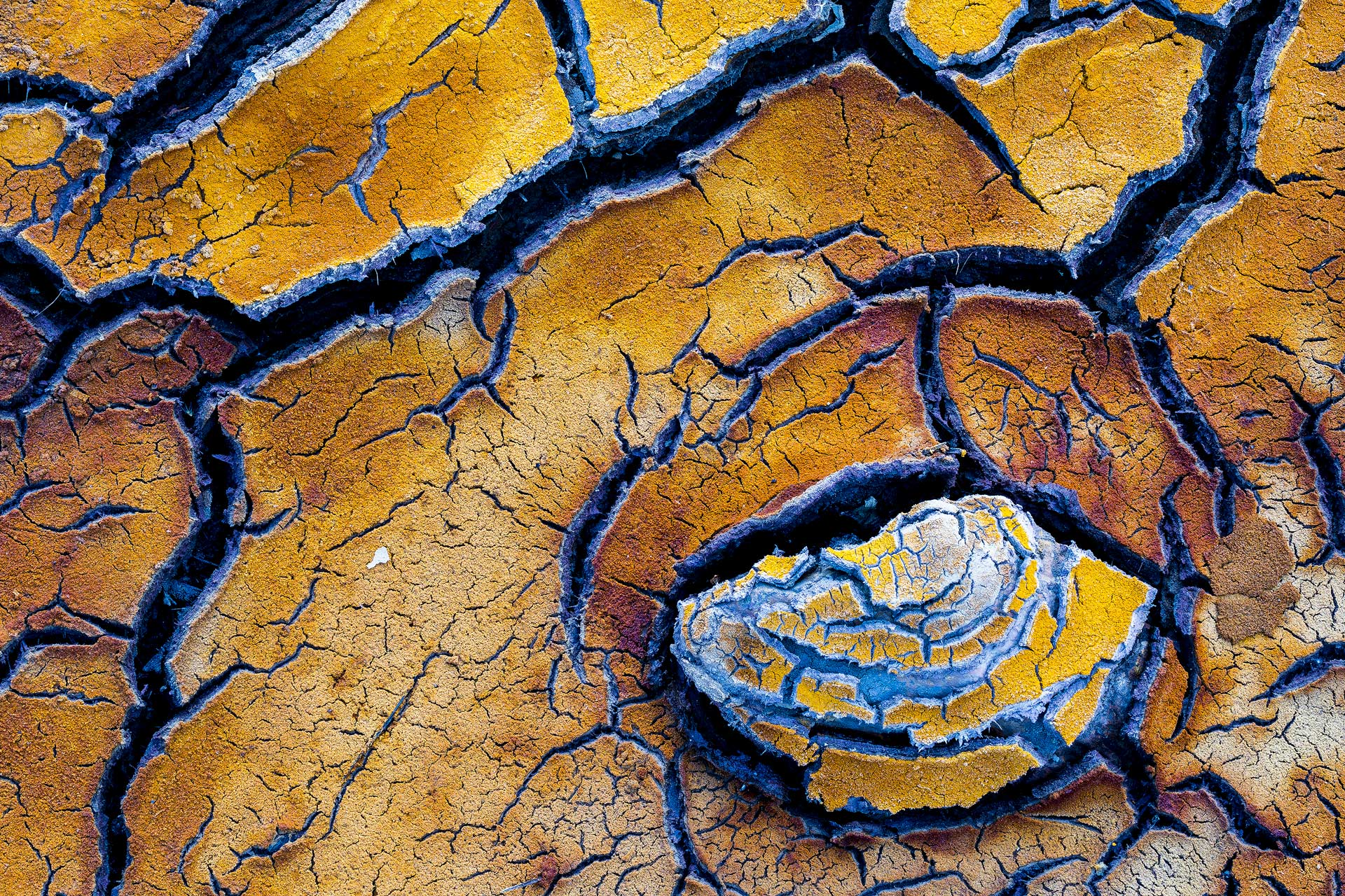 Javier Alonso Torre - Javier Alonso Torre Fotografía de naturaleza