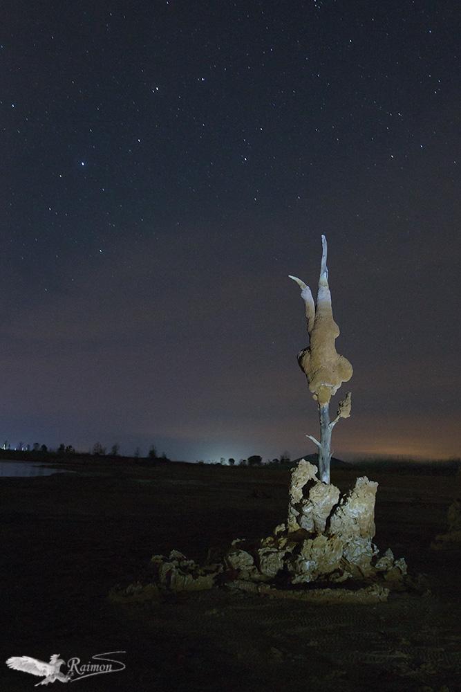 Nocturna - Raimon Santacatalina | Night