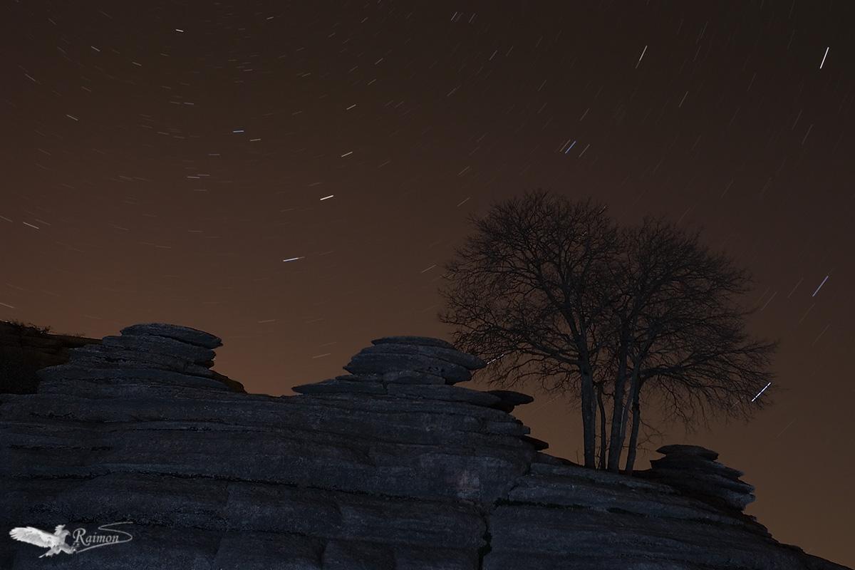 Seleccionada Concurso Internacional Monphoto 2011 - Nocturna - Raimon Santacatalina | Nocturna