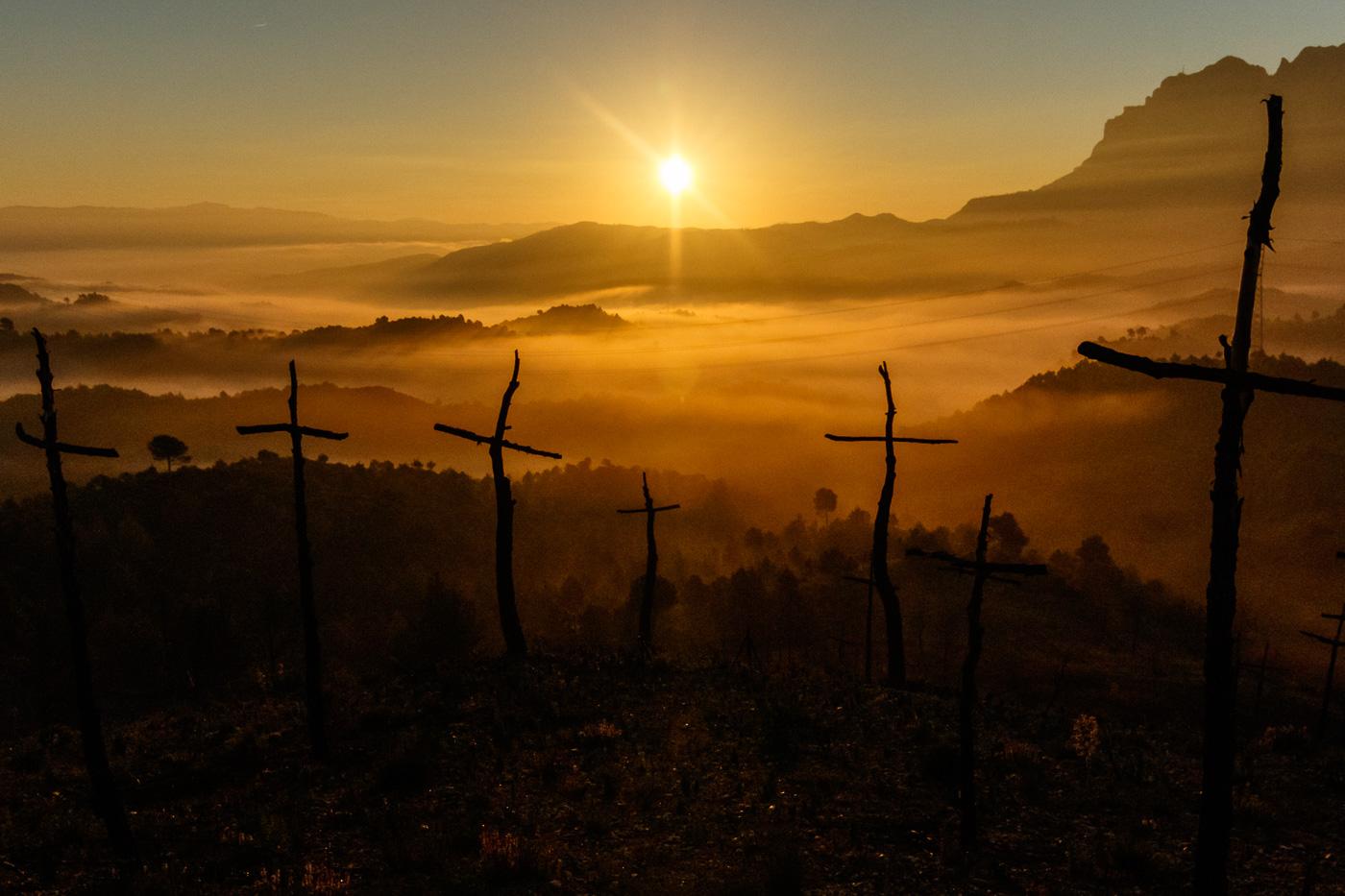 Bosc de les creus - Fotografies de paisatges - Raül Carmona - Fotografia, Fotografia d'estudi, esdeveniments i Natura