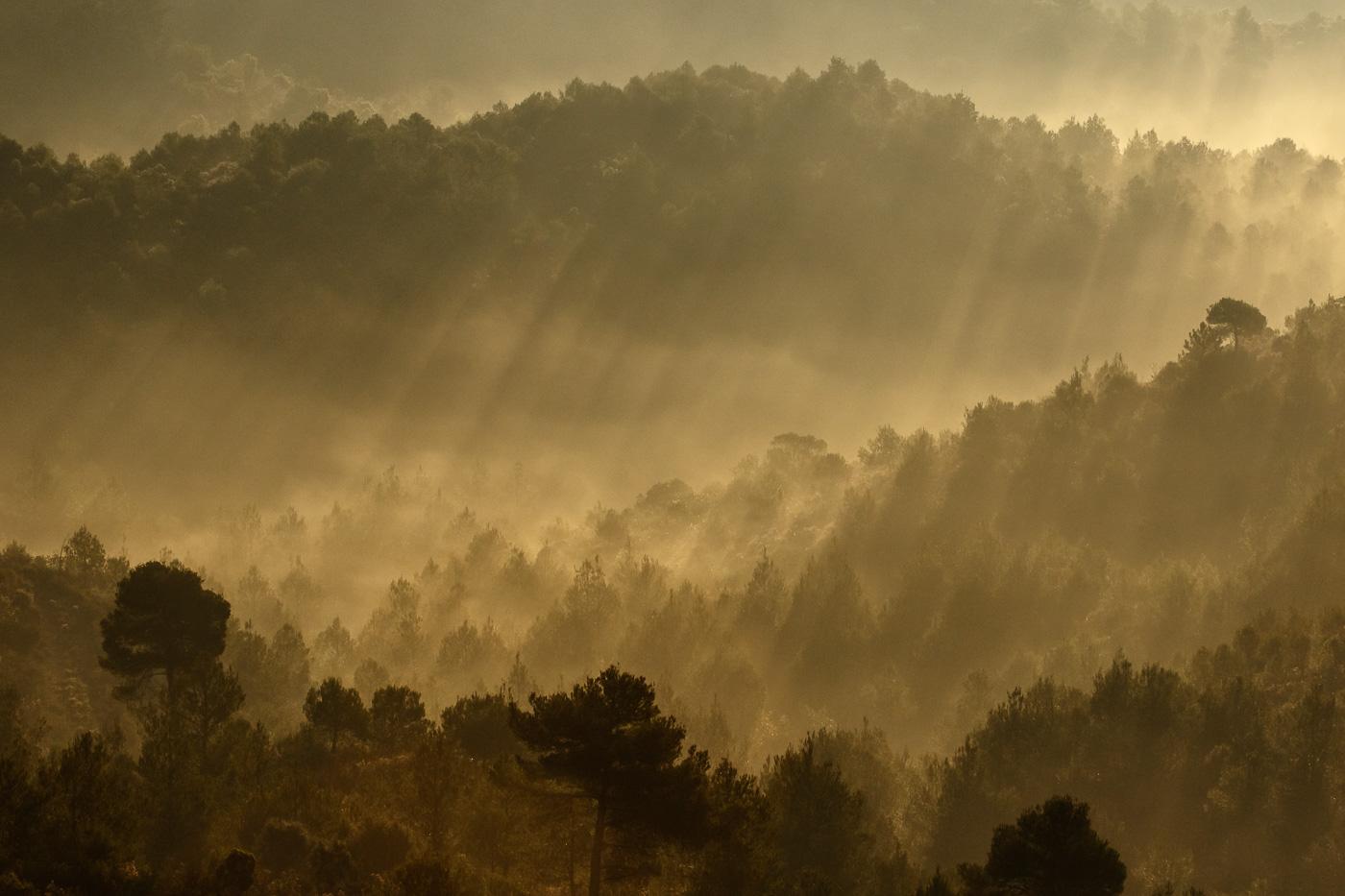 Ombres i boires - Fotografies de paisatges - Raül Carmona - Fotografia, Fotografia d'estudi, esdeveniments i Natura