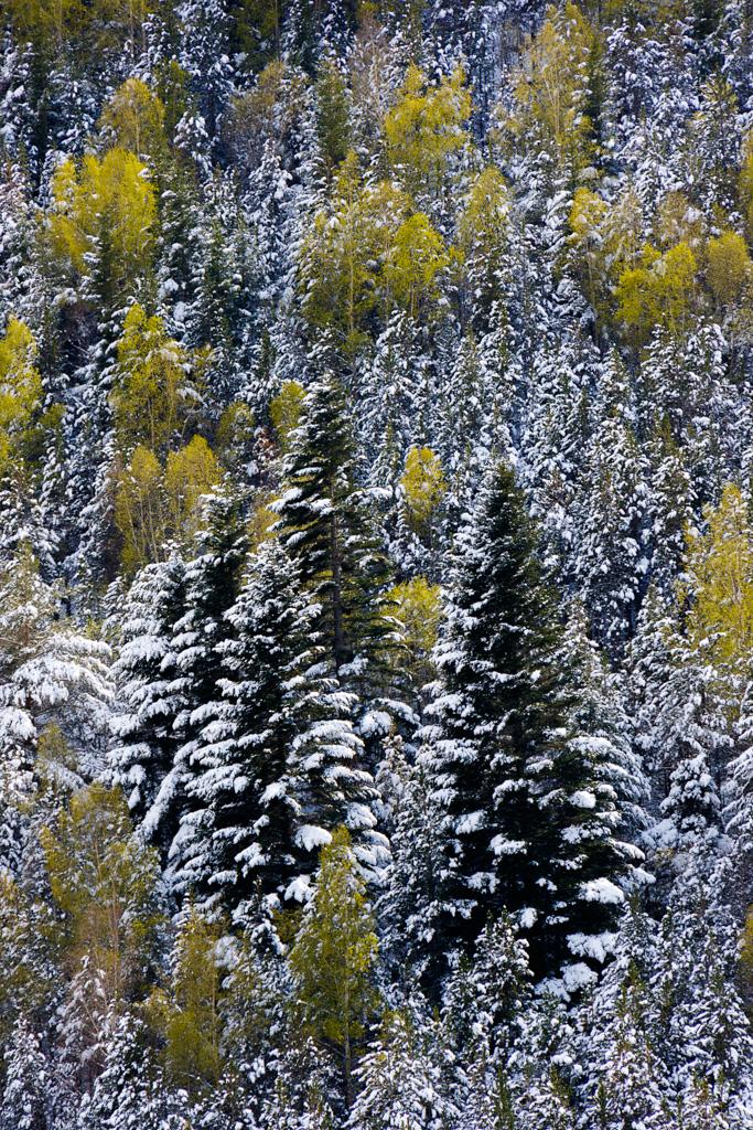 Neu verge - Fotografies de paisatges - Raül Carmona - Fotografia, Fotografia d'estudi, esdeveniments i Natura