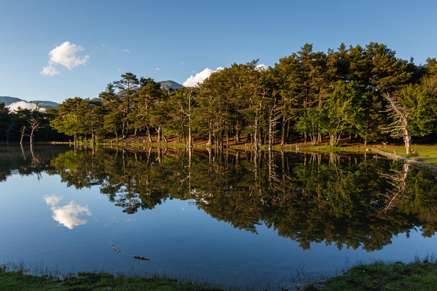 Simetria circular - Fotografies de paisatges - Raül Carmona - Fotografia, Fotografia d'estudi, esdeveniments i Natura