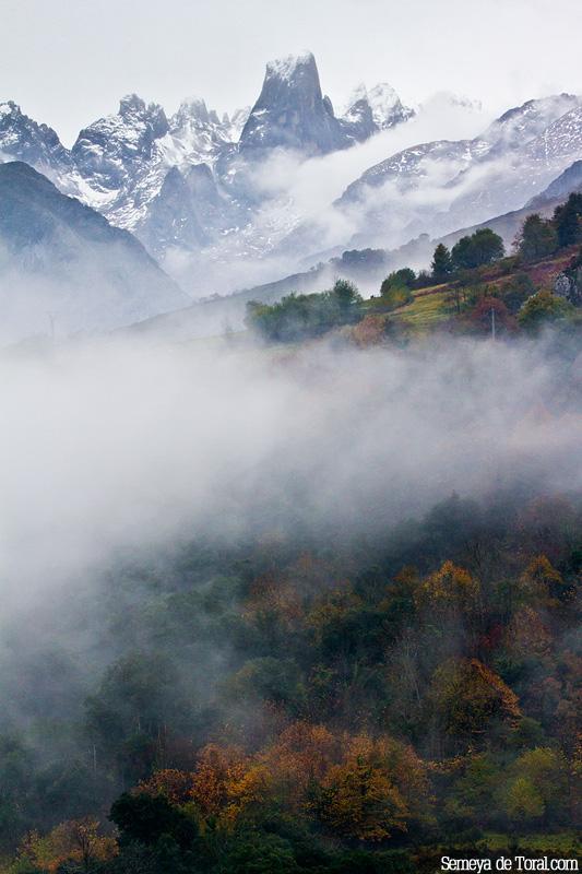 Nieve, bruma, monte, bosque, otras partes fundamentales de Asturies. - Picu Urriellu - Semeya  de Toral