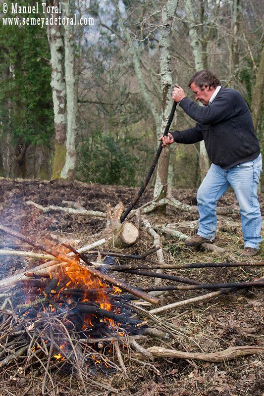 Y ya vamos trabajando la madera. - Magüestando mangos - Semeya  de Toral