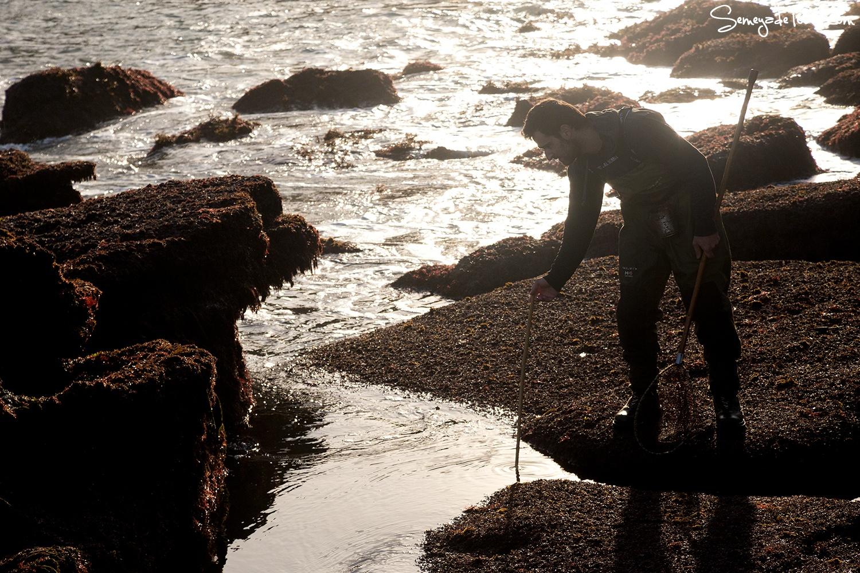 El sol ya nos calienta. - Pesca tradicional de Barbaes - Semeya  de Toral