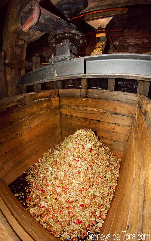 Manzana picada - En el Llagar - Semeya  de Toral