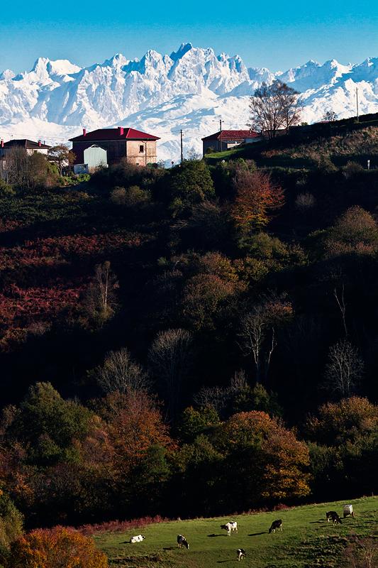 Vista desde las tierras alta de Villaviciosa, un lujo. - MONTAÑA - Semeya  de Toral
