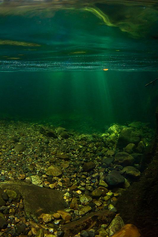 Aurora subacuática. - RÍOS Y BOSQUES - Semeya  de Toral