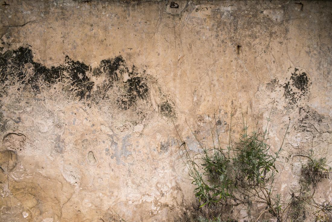 estudio 7989. 2016 - JARDEN FUNDACION E. VALLE. INTERPRETATION.  - Senén Merino . Fografías Fundación M. Evaristo Valle. Gijón.