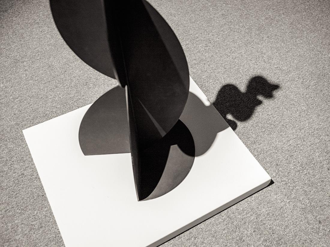 estudio 8483.  sin título. 1988. Andreu Alfaro.  2017 - ELOGIO DE LA SOMBRA.-praise in the shadow-.2017 - senén merino, photograph