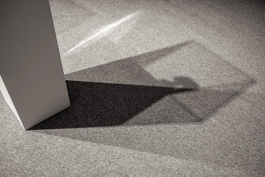 estudio 8599. femme debout. 1961. Pablo Ruiz Picasso. 2017 - ELOGIO DE LA SOMBRA.-praise in the shadow-.2017 - senén merino, photograph