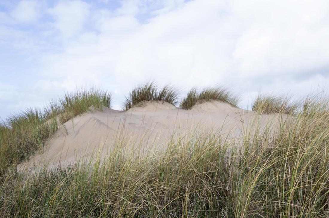 estudio 7239 - dunas en Salinas.-dunes in Salinas-. 2018 - senén merino, photograph