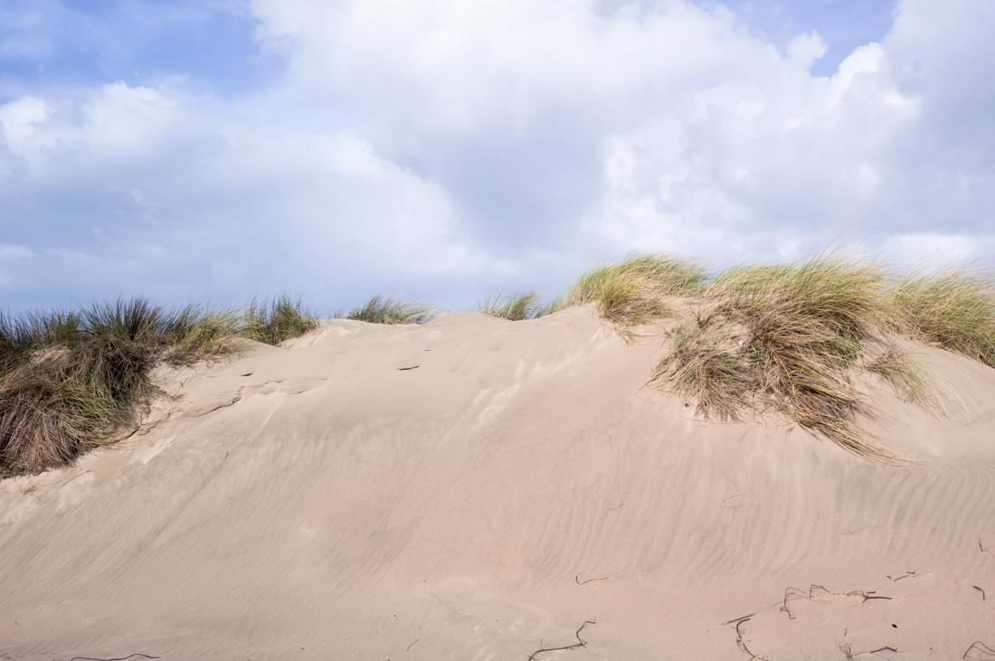 estudio 7251 - dunas en Salinas.-dunes in Salinas-. 2018 - senén merino, photograph