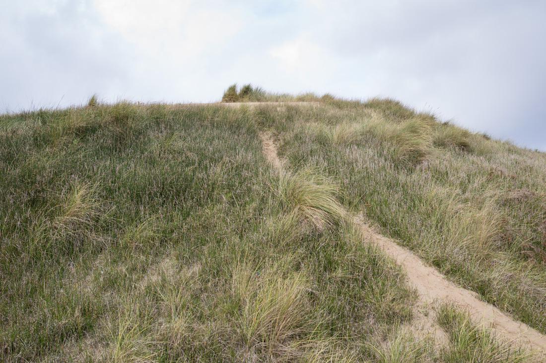 estudio 7286 - dunas en Salinas.-dunes in Salinas-. 2018 - senén merino, photograph
