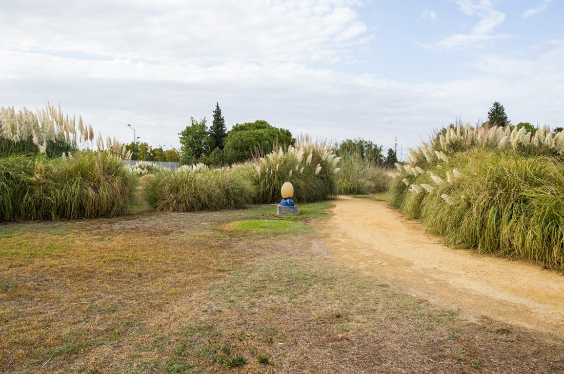 estudio 1850. Sevilla. 2019 - paisaje construido.-landscape built- - senén merino, photograph