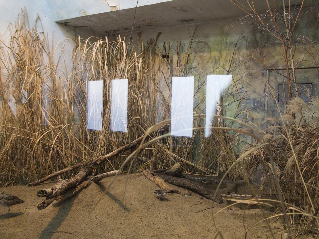 estudio 6292. Varsovia. 2014 - detrás del reflejo.-behind the reflection- - senén merino, photograph