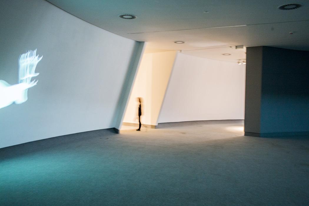 estudio 494.  Avliles. 2014 - museos y galerias.-museums and galleries- - senén merino, photograph