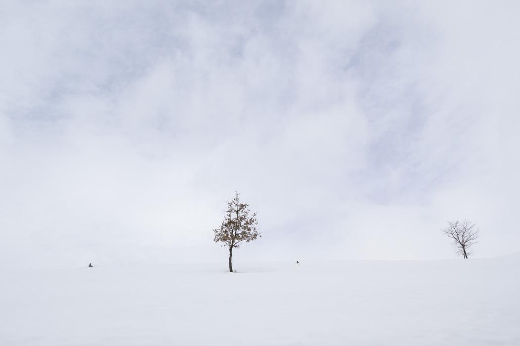 estudio 378. Quiros. 2015 - SNOW color - senén merino, photograph
