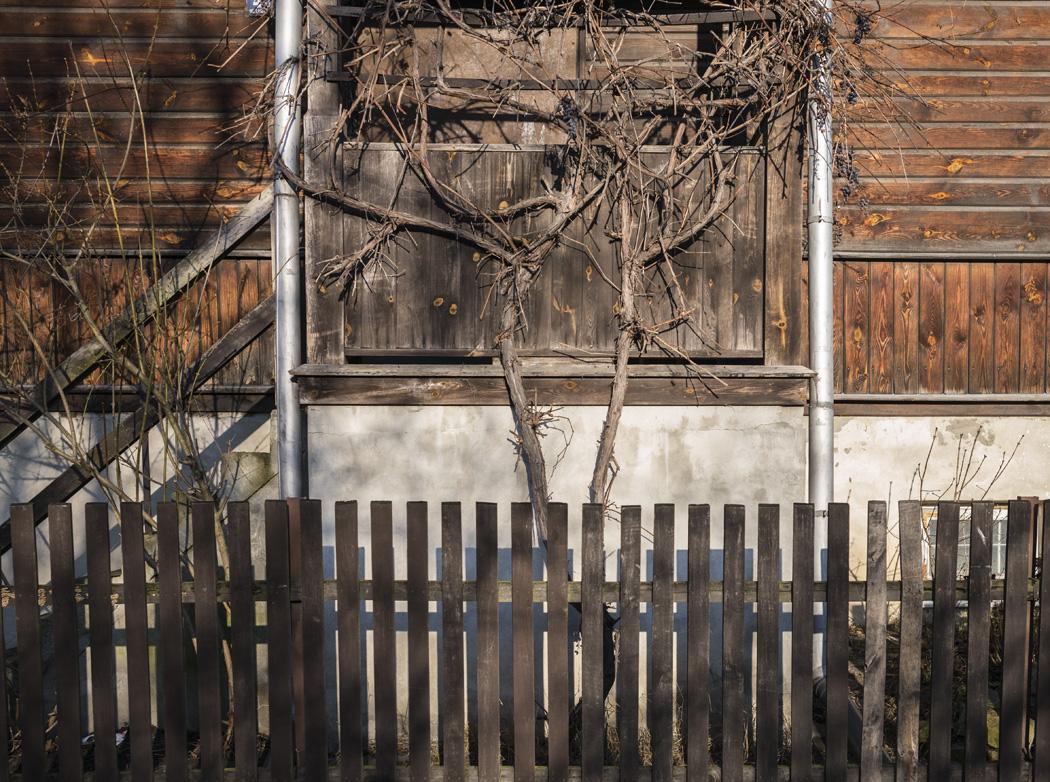 estudio 2255 - Kazimierz Dolny. 2014 - senén merino, photograph