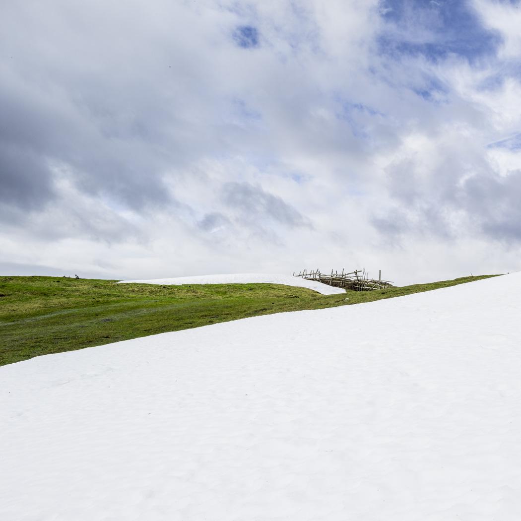 estudio 423. Gamoniteiru. 2015 - SNOW color - senén merino, photograph