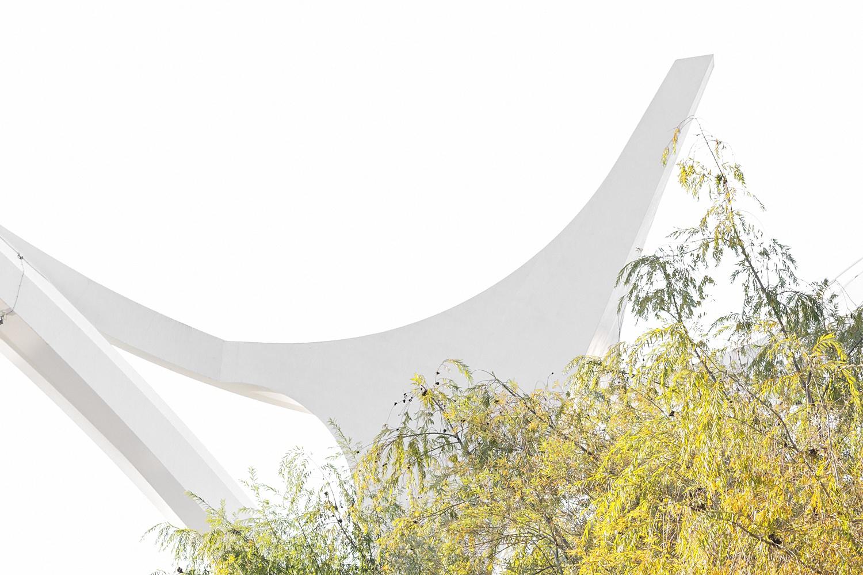C ó r d o b a - naturaleza urbana - Nuria Murillo Lara naturaleza urbana