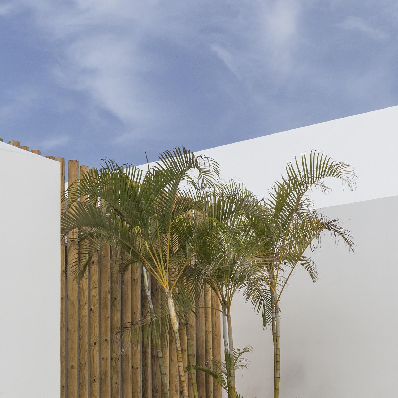 T en e r i f e - naturaleza urbana - Nuria Murillo Lara naturaleza urbana