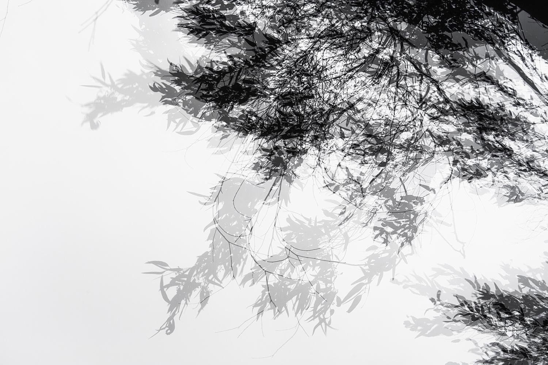 vientos -  Fotografias Nuria Murillo Lara Vientos
