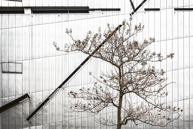 B e r l í n - naturaleza urbana - Nuria Murillo Lara naturaleza urbana