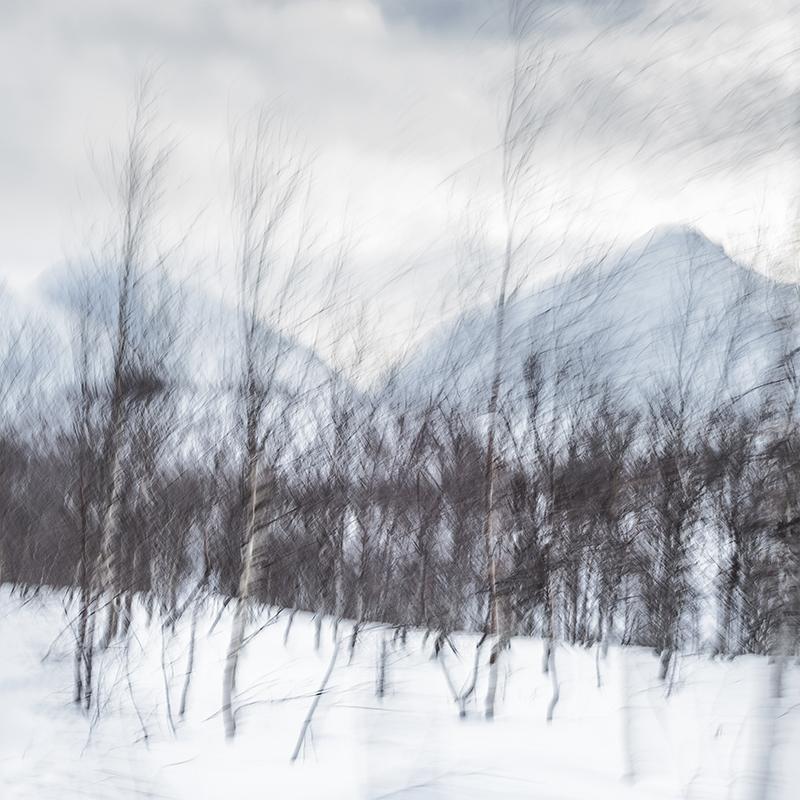 norte -  nuriamurillolara fotografias de la serie N O R T E  realizadas en Tromsø (Noruega), 2014.