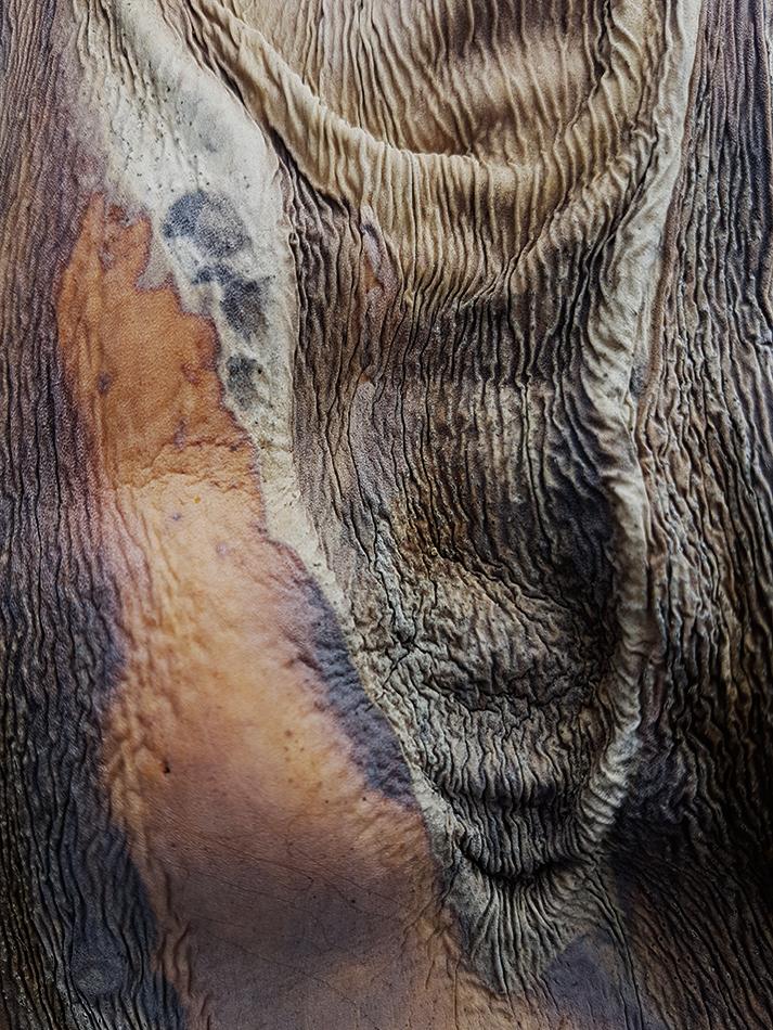 Las edades III - Ubaldo Moreno, Fotografía