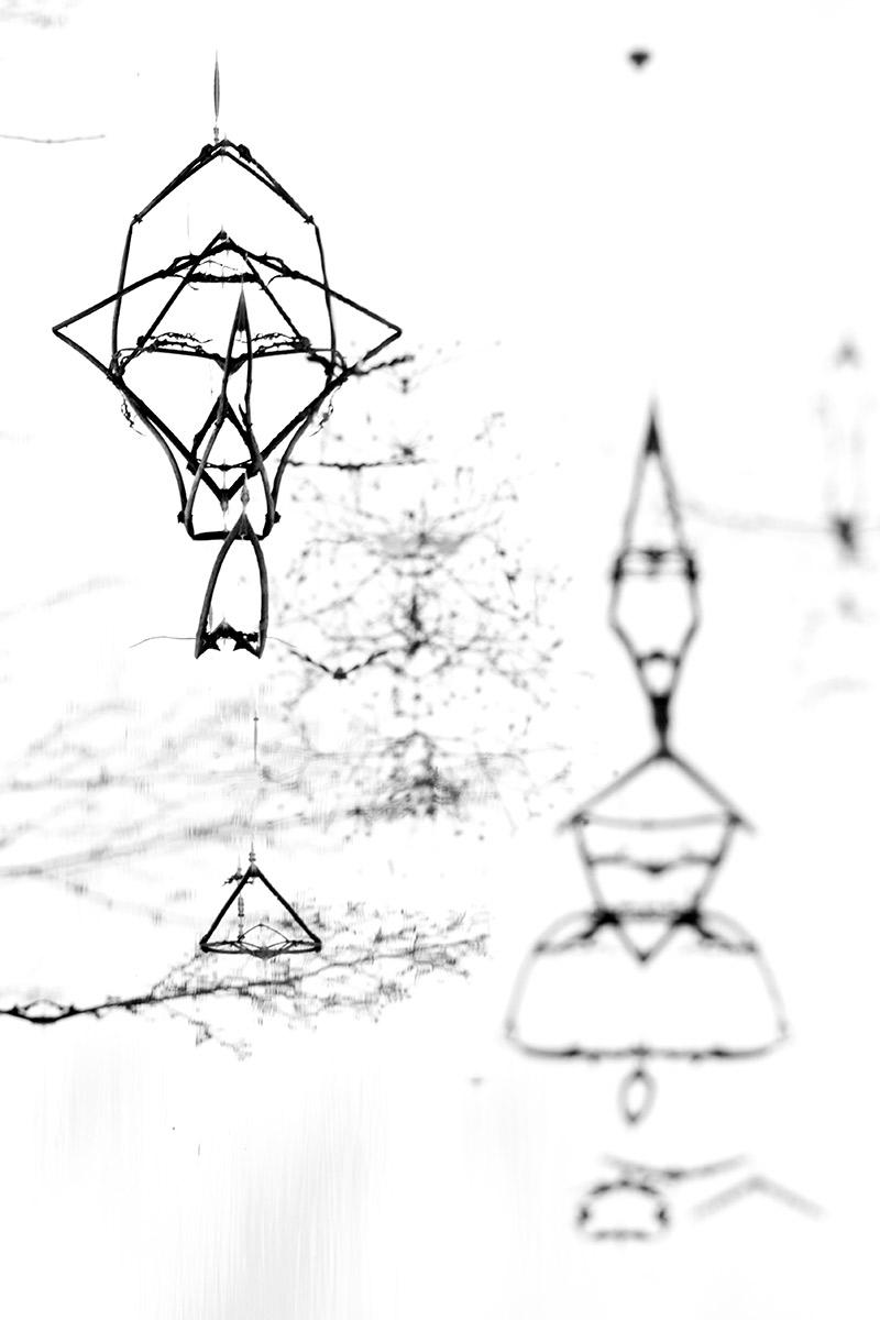 Farolillos chinos - Mis monstruos - Uge Fuertes Sanz, Fotografía de naturaleza desde el arte y creatividad. Imaginación en fotografía,  busqueda de elementos artísticos. Composición y efectos pictoricos