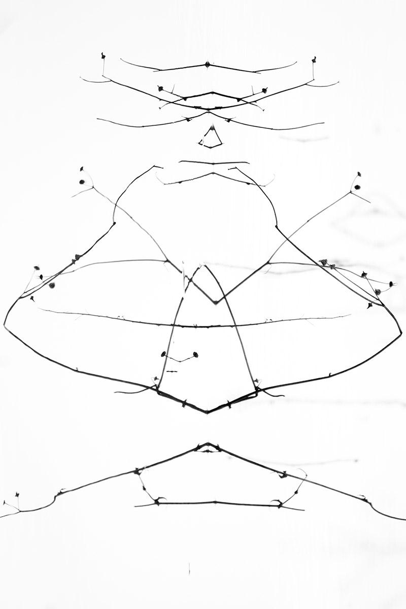 Caras y mascaras - Mis monstruos - Uge Fuertes Sanz, Fotografía de naturaleza desde el arte y creatividad. Imaginación en fotografía,  busqueda de elementos artísticos. Composición y efectos pictoricos