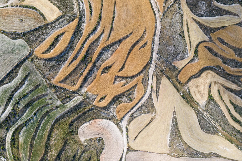 Artistas del arado -  Uge Fuertes Artistas del arado