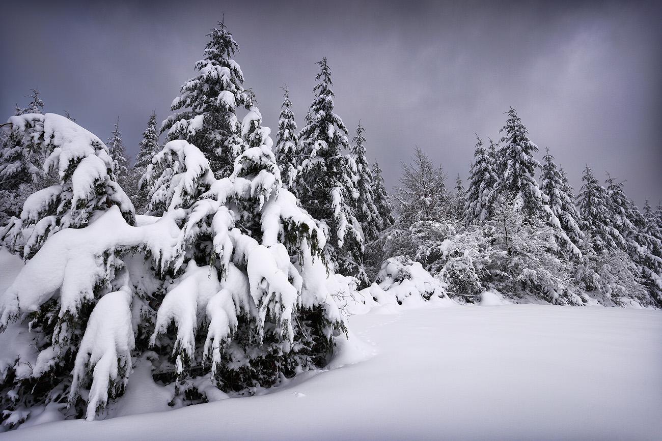 Montaña - Urtzi Vera, Arte y Naturaleza